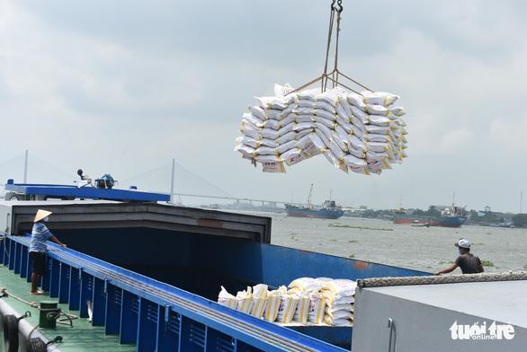 Được xuất khẩu gạo nhưng doanh nghiệp lo đã trễ cơ hội vàng - Ảnh 2.