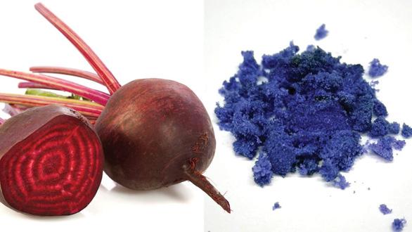 Khoa học tạo ra màu mới: xanh củ dền - Ảnh 1.