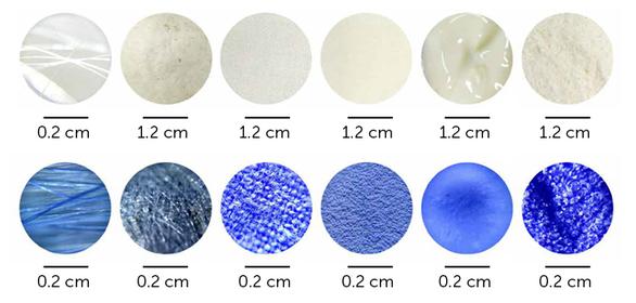 Khoa học tạo ra màu mới: xanh củ dền - Ảnh 2.
