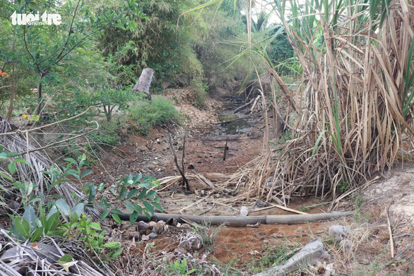 Hạn mặn sông Vàm Cỏ, bán đảo Cà Mau ở mức cao vào giữa tháng 4 - Ảnh 1.