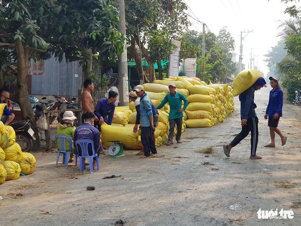 An Giang kiến nghị cho xuất khẩu gạo cứu nông dân và doanh nghiệp - Ảnh 2.