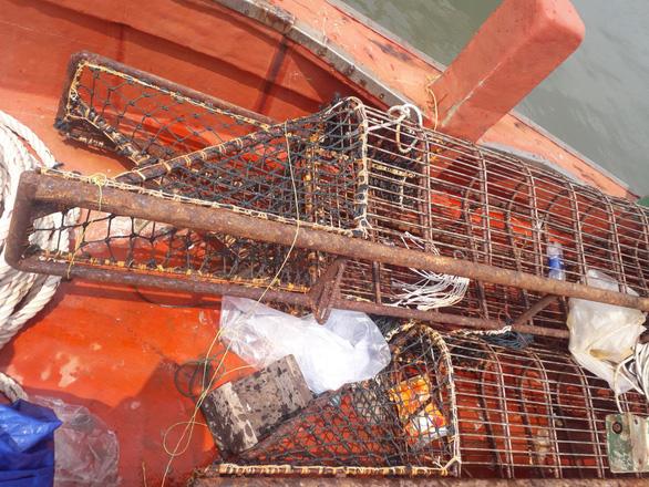 Bắt vụ khai thác 1,2 tấn hải sản nguy cấp, quý, hiếm ở Côn Đảo - Ảnh 3.