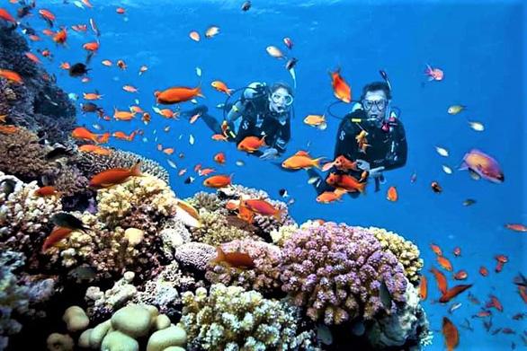 Khu bảo tồn biển Hòn Mun đón khách trở lại - Ảnh 1.