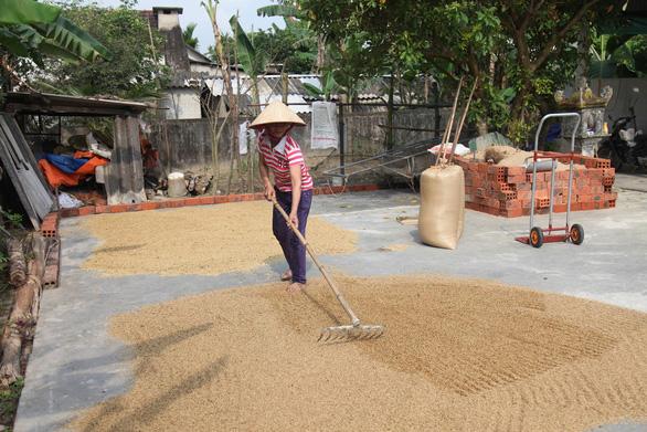 Hộ nghèo Hà Tĩnh xin không nhận trợ cấp để chia sẻ với Chính phủ lúc khó khăn - Ảnh 1.