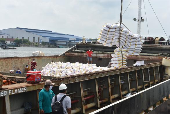 Xù bán gạo vẫn được đấu thầu mua gạo dự trữ? - Ảnh 1.
