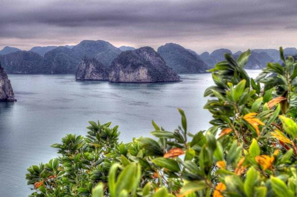 Báo Mỹ: Việt Nam đang chiếm ưu thế trong phục hồi du lịch - Ảnh 1.