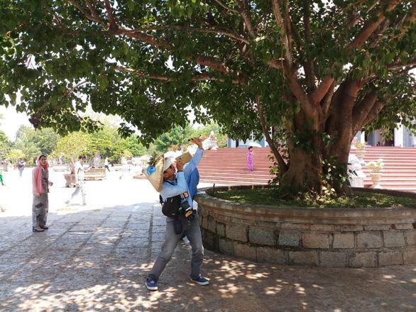Người bắn khỉ tại chùa Linh Ứng cam kết không tái phạm - Ảnh 1.