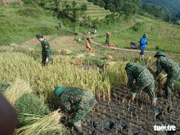 Bạn trẻ đội nắng hè xuống đồng giúp dân gặt lúa - Ảnh 4.