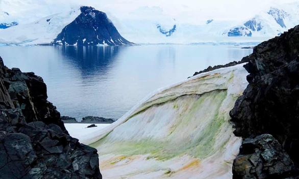 Tuyết Nam Cực chuyển màu xanh lá bao trùm, có thể thấy từ vũ trụ - Ảnh 1.