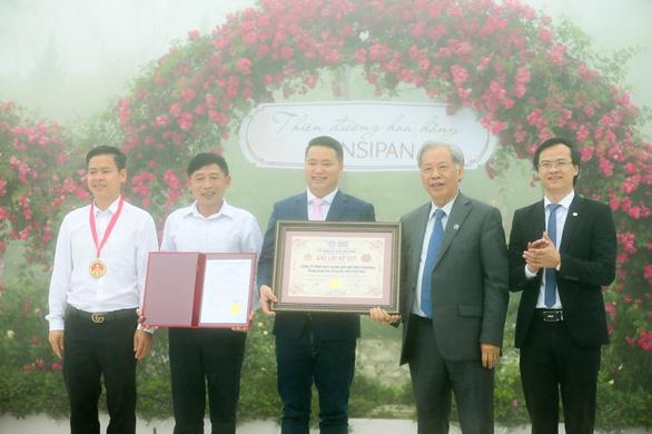Sa Pa nhận kỷ lục thung lũng hoa hồng lớn nhất Việt Nam - Ảnh 4.