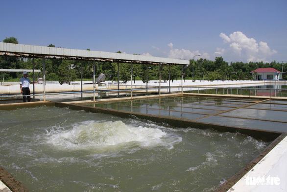 Đà Nẵng miễn, giảm tiền sử dụng nước sạch cho nhiều người dân bị ảnh hưởng COVID-19  - Ảnh 1.