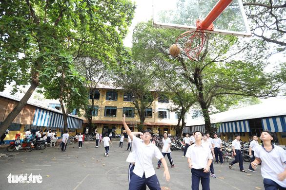 Cây đổ lộ ra thêm chuyện quản lý cây xanh trong trường học - Ảnh 1.