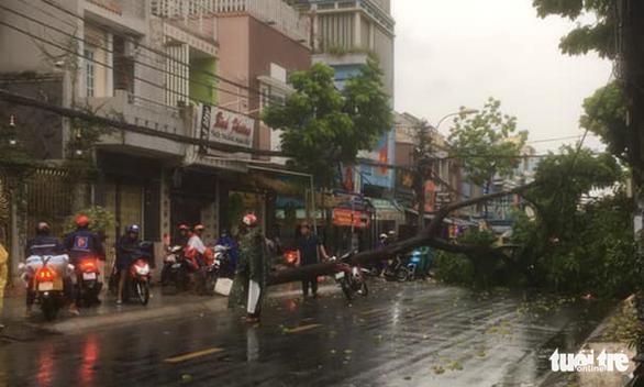TP.HCM: Mưa lớn nước chảy như lũ trên phố, cây gãy cành đè người đi đường - Ảnh 5.