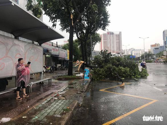 TP.HCM: Mưa lớn nước chảy như lũ trên phố, cây gãy cành đè người đi đường - Ảnh 6.