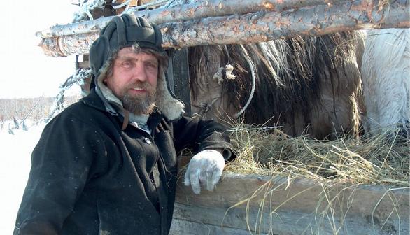 Nghiên cứu lạ: Đưa ngựa, tuần lộc lên Bắc Cực ngăn băng tan - Ảnh 2.