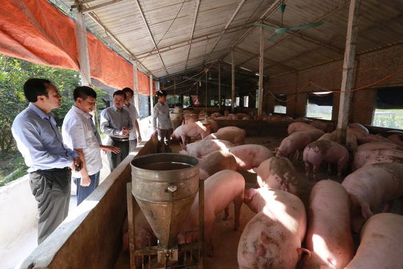 Bộ Nông nghiệp nói gì khi giá thịt heo vẫn tăng? - Ảnh 1.