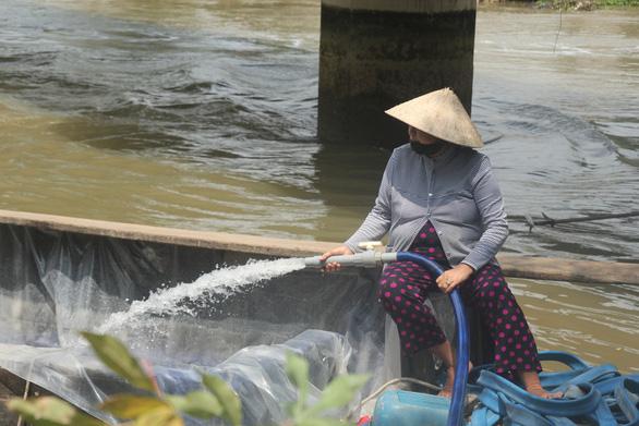 Độ mặn giảm, dân miền Tây vẫn phải thử độ mặn khi lấy nước tưới - Ảnh 1.