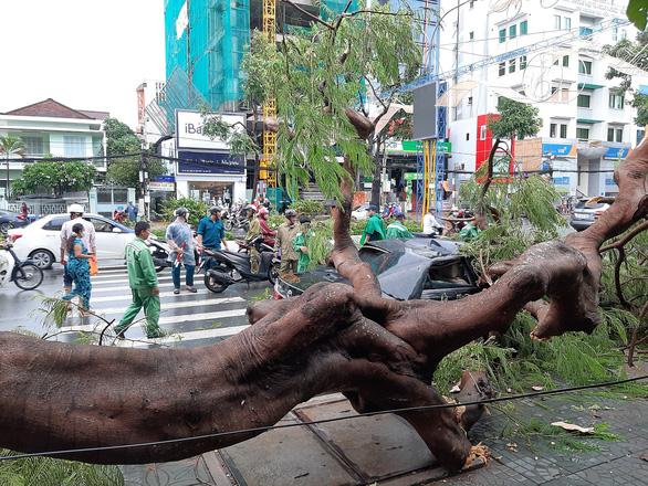 Cần Thơ: 1 người chết do mưa dông, nhiều nhà tốc mái, cây xanh bật gốc - Ảnh 2.