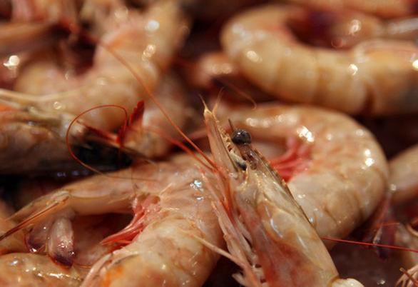 Giả khuyến mãi 'câu khách', chủ nhà hàng hải sản bị phạt hơn 700 năm tù - Ảnh 1.