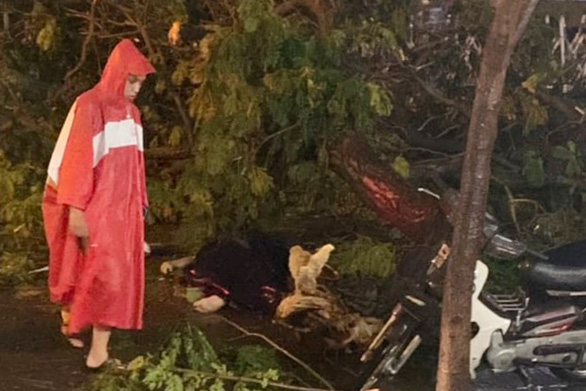 Cây xanh đường Tô Hiến Thành, TP.HCM tét nhánh trong mưa đè chết người - Ảnh 2.