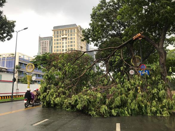 Bão số 1 mạnh lên, cách Hoàng Sa 450km, TP.HCM đã có mưa, gió - Ảnh 3.