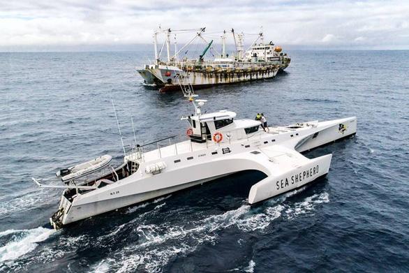 Săn lùng các đội tàu sát thủ đại dương - Kỳ 1: Đội tàu ma Trung Quốc - Ảnh 3.