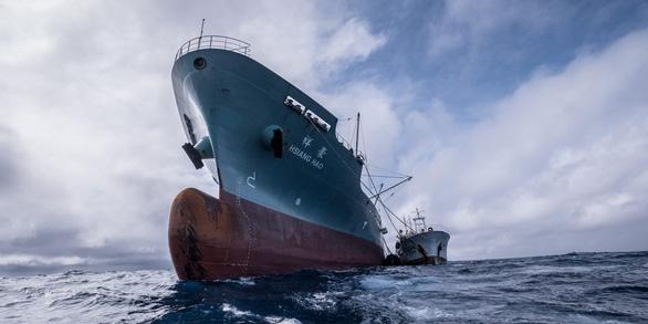 Săn lùng các đội tàu sát thủ đại dương - Kỳ 4: Tàn sát thủy sản giữa biển khơi - Ảnh 1.