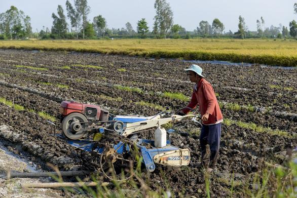 Không sửa sớm Luật thuế 71: thiệt hại cả tỉ USD, doanh nghiệp, nông dân thiệt - Ảnh 1.