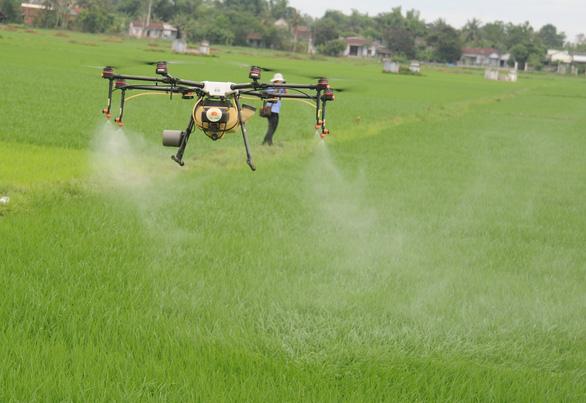 Nông dân Quảng Nam thích thú xem thiết bị bay làm ruộng - Ảnh 1.