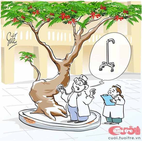 Vì sao chặt cây? - Ảnh 1.