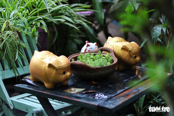 Khu vườn xanh độc đáo được làm từ vật dụng vứt ngoài đường ở Sài Gòn - Ảnh 5.