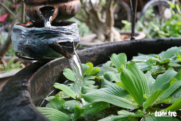 Khu vườn xanh độc đáo được làm từ vật dụng vứt ngoài đường ở Sài Gòn - Ảnh 6.
