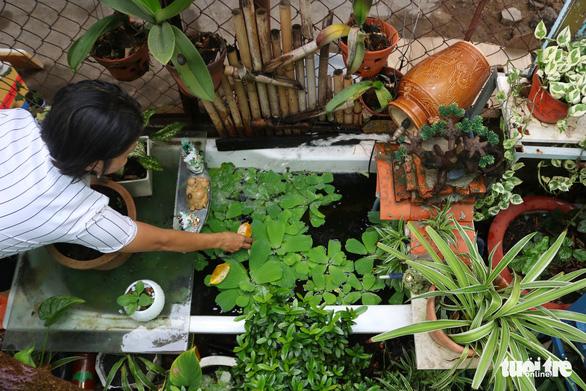 Khu vườn xanh độc đáo được làm từ vật dụng vứt ngoài đường ở Sài Gòn - Ảnh 4.