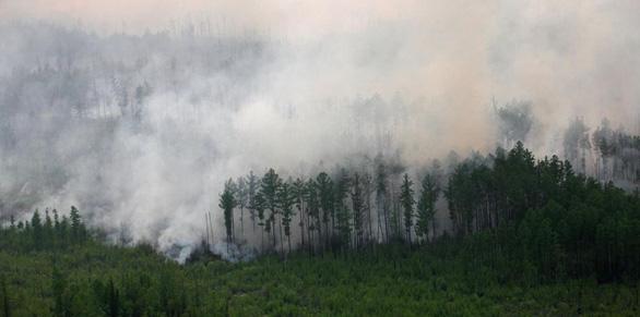 Cháy rừng bất thường ở Bắc Cực, lo khí nhà kính tăng vọt - Ảnh 6.