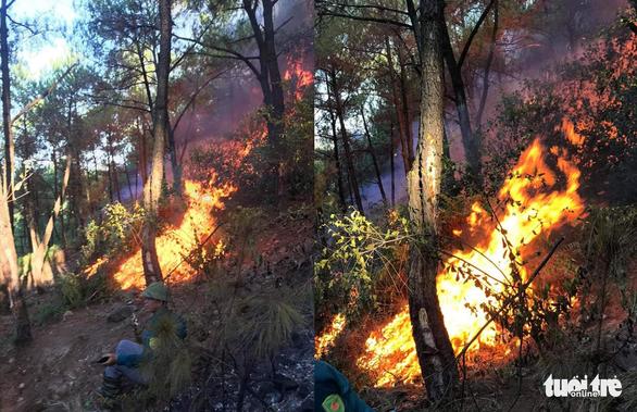 Cháy rừng lan ra 3 huyện, cả ngàn người dập lửa - Ảnh 1.
