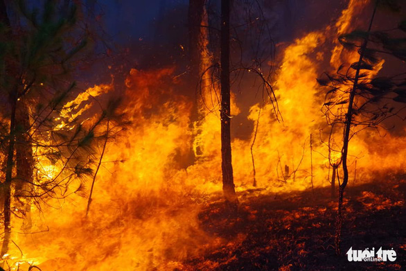 Bộ đội trắng đêm dập lửa cứu rừng - Ảnh 1.