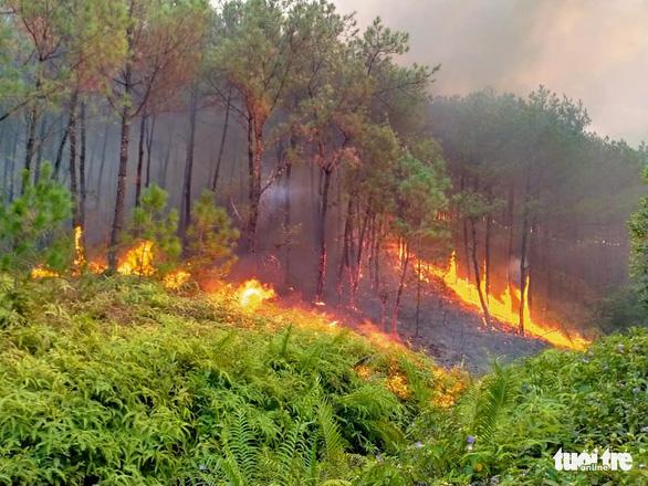 Bộ đội trắng đêm dập lửa cứu rừng - Ảnh 3.