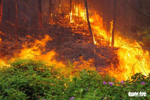 Bộ đội trắng đêm dập lửa cứu rừng - Ảnh 2.