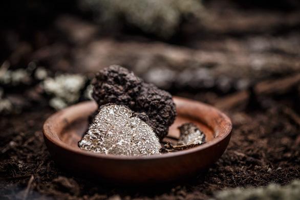 Khám phá vị ngon trong những món ăn vương giả - Ảnh 1.
