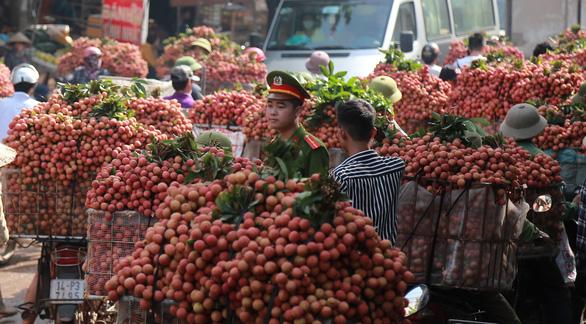 Đề xuất cho thương nhân Trung Quốc mua vải thiều được miễn phí ăn, ở trong 14 ngày cách ly - Ảnh 1.