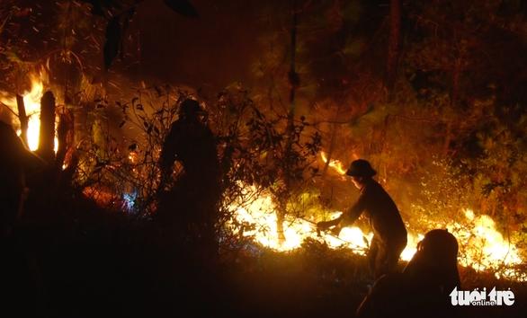 Thủ tướng yêu cầu không để lặp lại cháy rừng diện rộng như năm 2019 - Ảnh 1.
