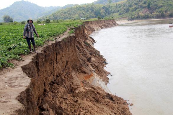 Ngăn sông Cha sạt lở hàng chục kilomet vì khai thác cát - Ảnh 2.