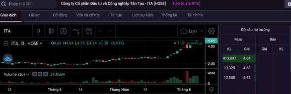 Bà Đặng Thị Hoàng Yến tái xuất sau 8 năm, cổ phiếu Tân Tạo tăng trần - Ảnh 2.