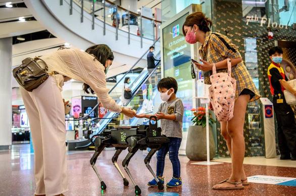 robot thai