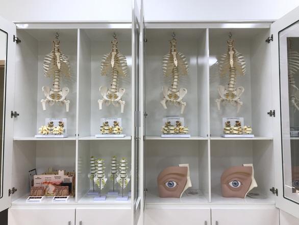 Đào tạo ngành Bác sĩ Đa khoa và Bác sĩ Răng-Hàm-Mặt tại ĐH Duy Tân - Ảnh 11.