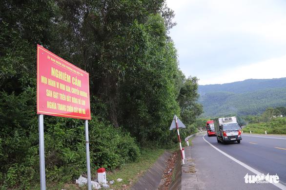 Đà Nẵng: Lập gác chắn, tuần tra ngăn xẻ đất rừng làm nghĩa trang trái phép - Ảnh 1.