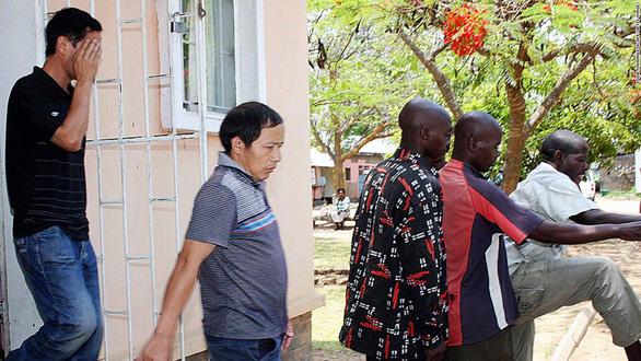 Tâm lý bài Hoa dâng cao ở Zambia, 3 người Trung Quốc bị cướp của, chặt xác - Ảnh 2.