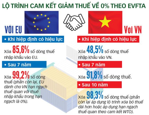 Đại sứ EU: Thương mại đi trước, đầu tư tiếp bước theo sau với EVFTA - Ảnh 2.