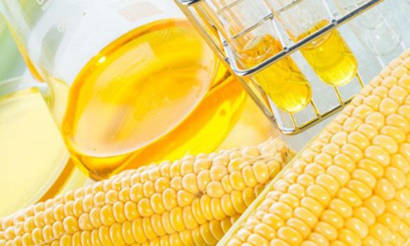 Điều tra đường lỏng chiết xuất từ tinh bột ngô nhập khẩu từ Trung Quốc, Hàn Quốc - Ảnh 1.
