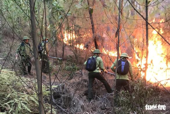 Cháy rừng liên tiếp ở Nghệ An nghi người đốt phá hoại - Ảnh 1.